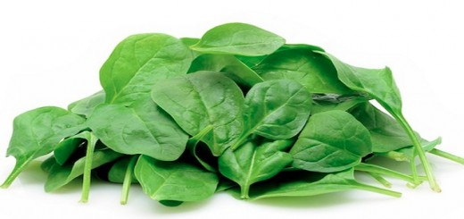 spinach resized