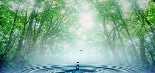 Water-cycle-wallpaper